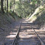 Disused track beyond Bullarto