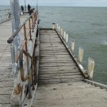 Old steam ferry mooring on Altona Pier