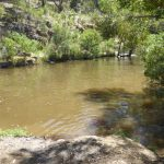 Vaughan Springs swimming hole