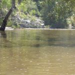 Loddon River at Vaughan Springs