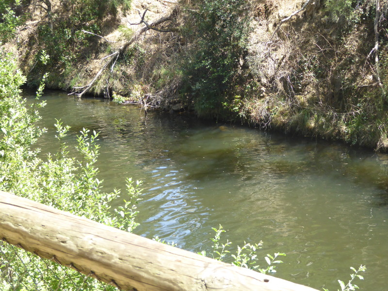 Ovens River swimming pool at Bright