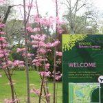 Bendigo Botanic gardens